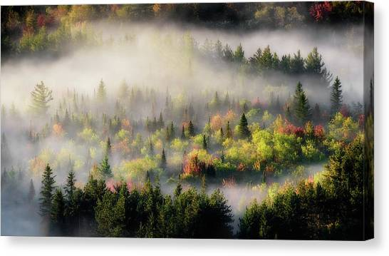 Fall Fog Canvas Print