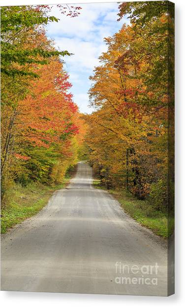 Corn Maze Canvas Print - Fall Foliage On The Back Roads Of Vermont by Edward Fielding
