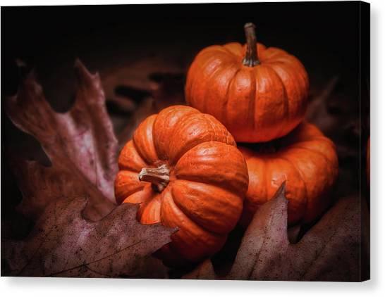 Decoration Canvas Print - Fall Fruits by Tom Mc Nemar