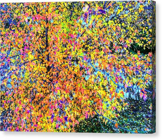 Fall Impressionism Canvas Print