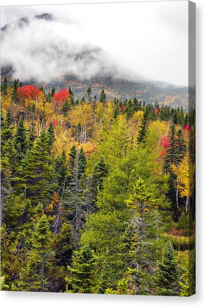 Fall In Baxter State Park Maine Canvas Print by Brendan Reals