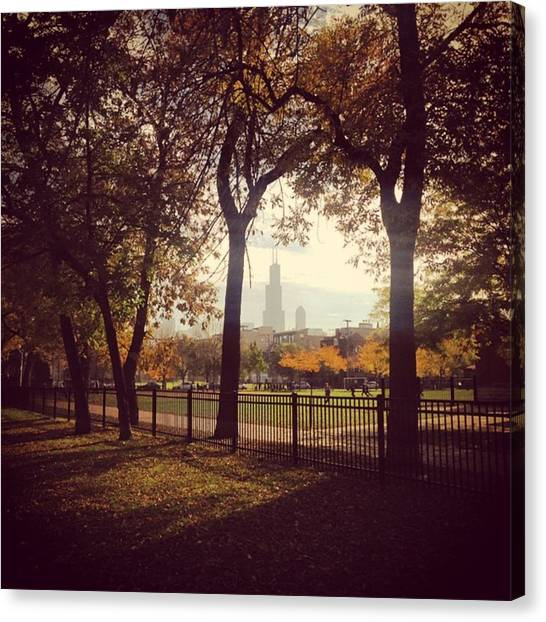 Skylines Canvas Print - Fall In Chicago by Sara N