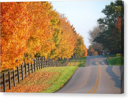 Fall In Horse Farm Country Canvas Print