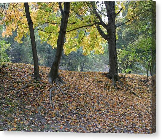 Fall In Stony Brook Canvas Print by Raju Alagawadi