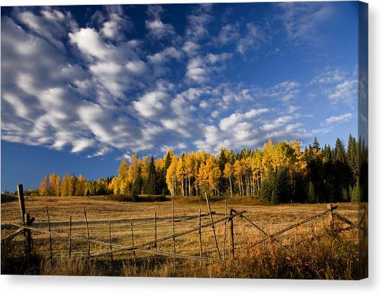 British Columbia Canvas Print - Fall In The Cariboo by Detlef Klahm