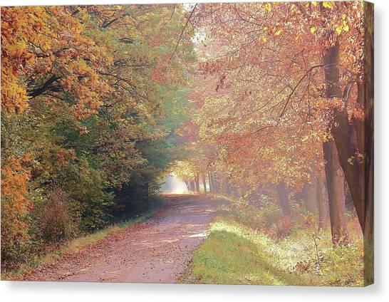 Canvas Print - Fall Is Coming by Slawek Aniol