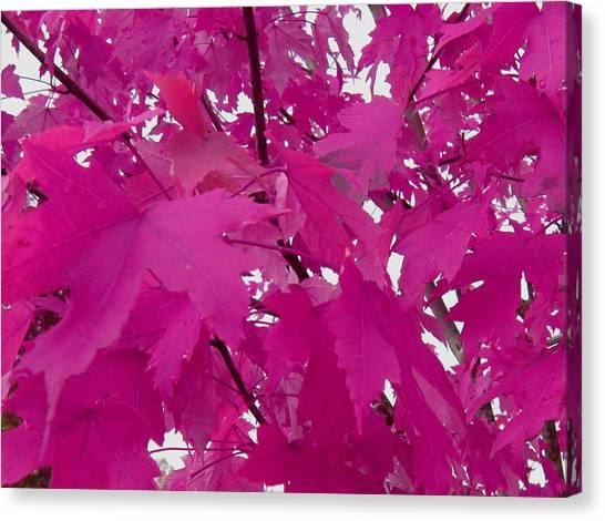 Fall Leaves #5 Canvas Print