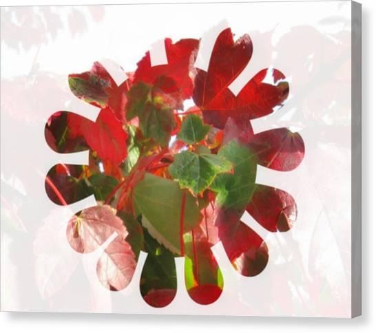 Fall Leaves #9 Canvas Print