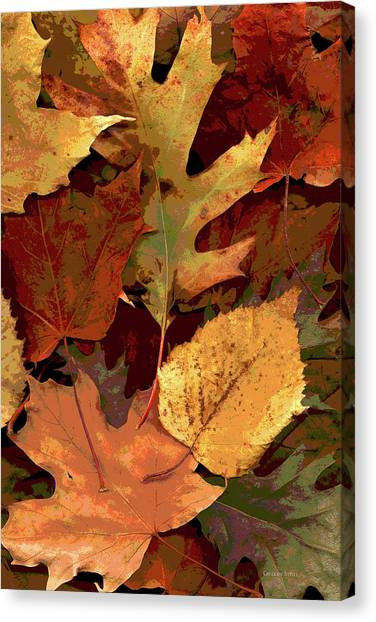 Maple Leaf Art Canvas Print - Fall Leaves by Gregory Steele