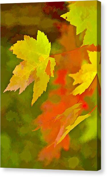 Fall Of Leaf Canvas Print