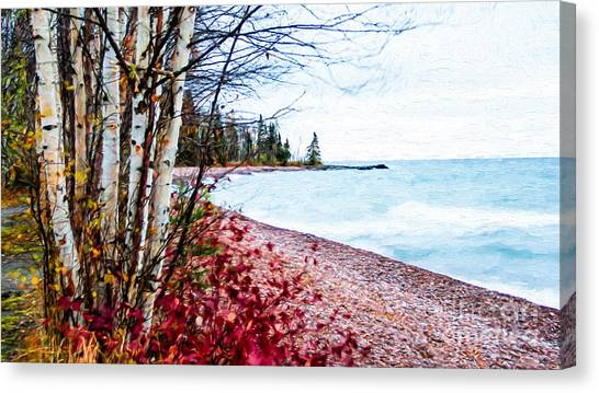 Fall On Lake Superior Canvas Print