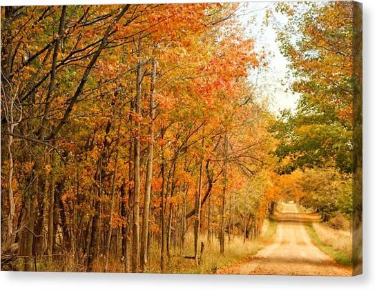9012 - Fall On Murphy Lake II Canvas Print