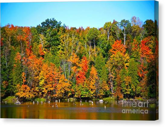 Fall On The Water Canvas Print by Robert Pearson