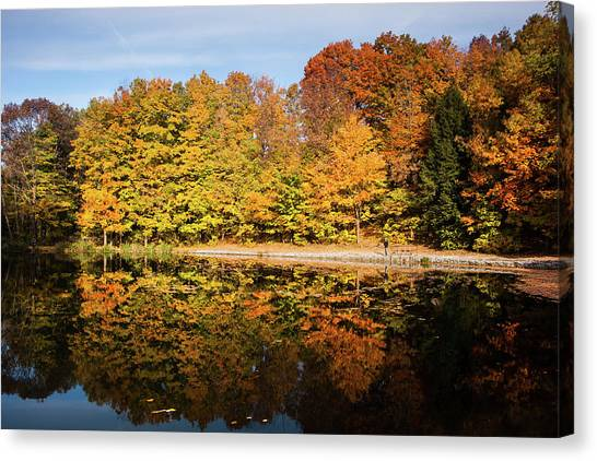 Fall Ontario Forest Reflecting In Pond  Canvas Print
