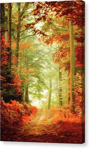 Fall Painting Canvas Print