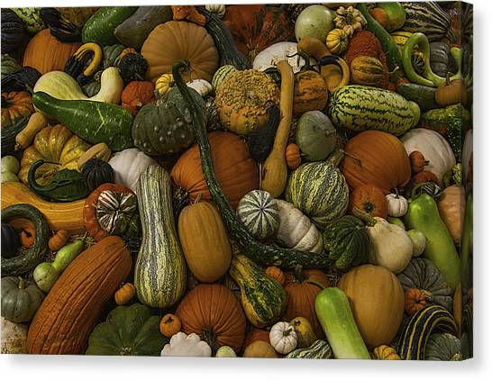 Gourds Canvas Print - Fall Pile by Garry Gay