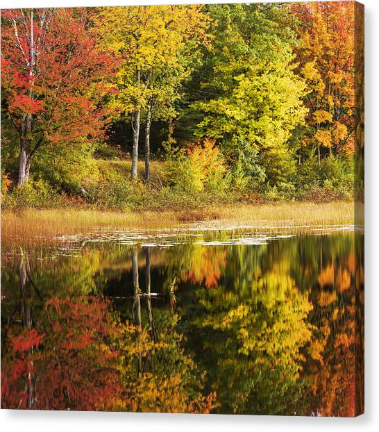 Maine Canvas Print - Fall Reflection by Chad Dutson