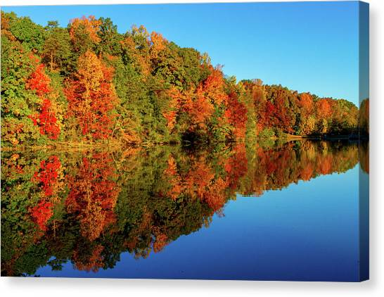 Fall Reflection Canvas Print