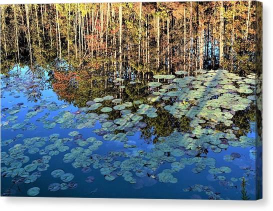 John Adams Canvas Print - Fall Reflections by John Adams