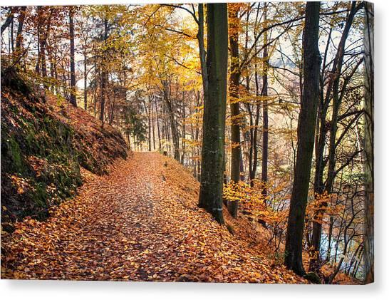Jenny Lake Canvas Print - Fall Road Along The Lake by Jenny Rainbow