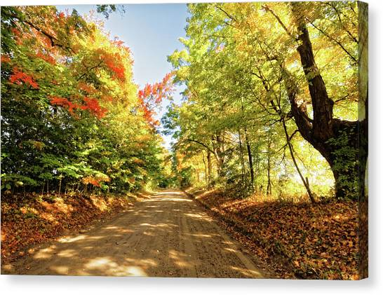 Canvas Print featuring the photograph Fall Roads by Lars Lentz