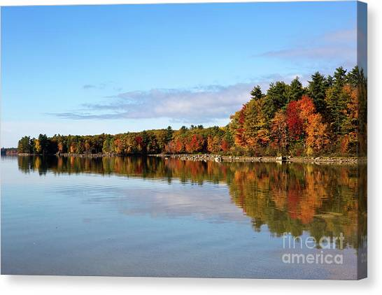 Fall Tree Reflections Lake Sabago Maine Canvas Print