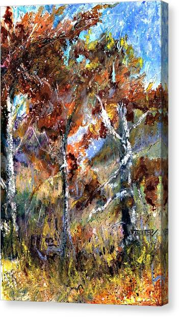 Fall Trees Canvas Print by Jimmie Trotter