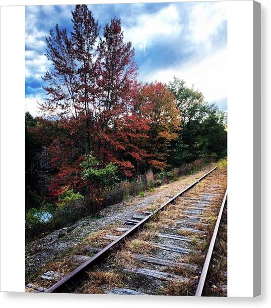 Stoplights Canvas Print - Autumn Stoplight Tracks by Sarah