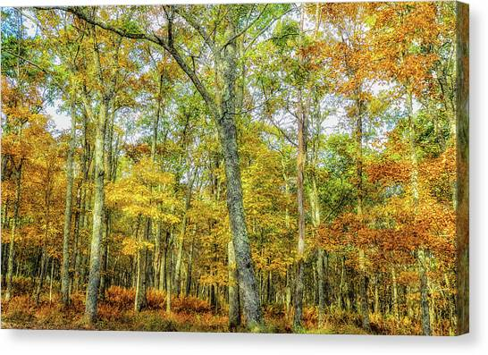 Fall Yellow Canvas Print