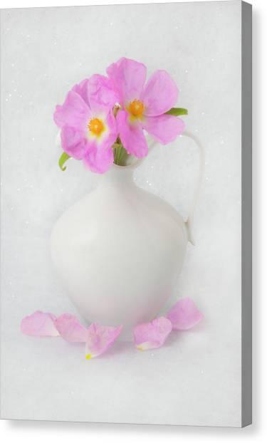 Fallen Petals Canvas Print