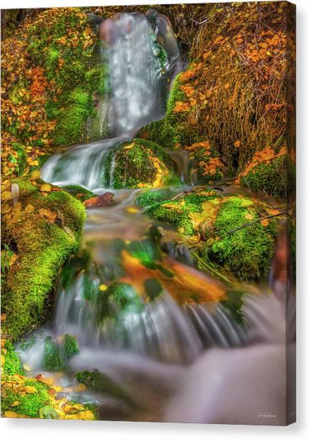 Fallert Creek Autumn Canvas Print by Leland D Howard
