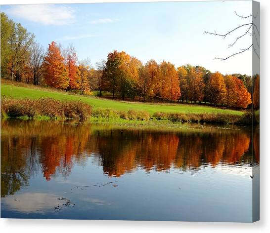 Canvas Print - Falling Color  by Red Cross