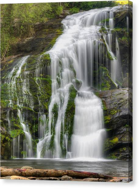 Falling Dream Canvas Print by Darrell Young