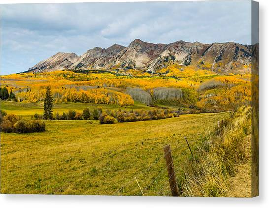 Falling For Anthracite Canvas Print