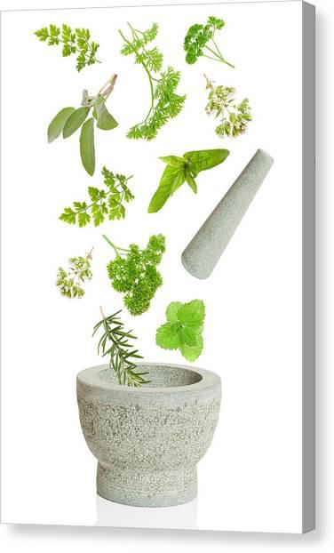 Mortar Canvas Print - Falling Herbs by Amanda Elwell