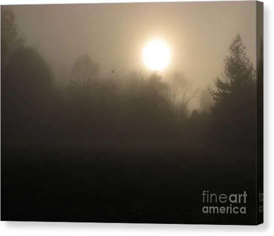Falling Leaf In Morning Fog Canvas Print