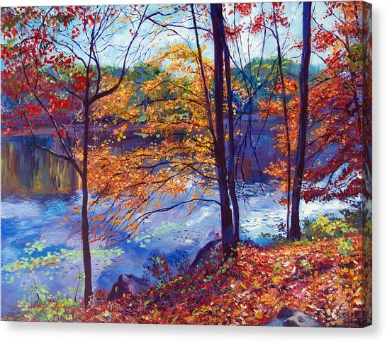 Falling Leaves Canvas Print by David Lloyd Glover