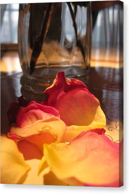 Falling Petals Canvas Print by Lisa Barr