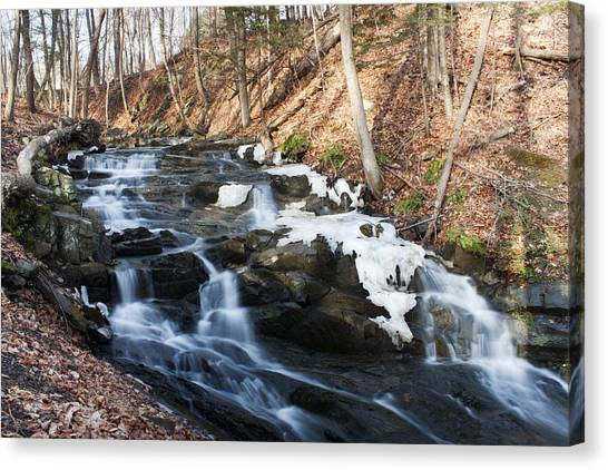 Falling Waters In February #1 Canvas Print