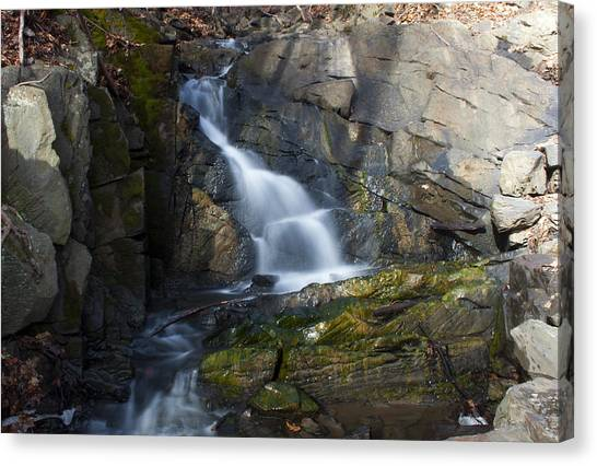 Falling Waters In February #2 Canvas Print