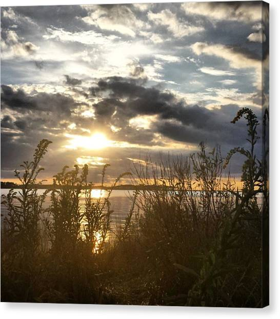 Seagrass Canvas Print - Fall Nights by Ashley Milburn