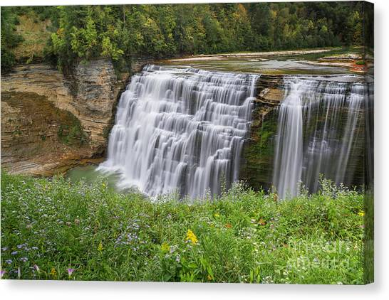 Autumn Flower Of Letchworth Middle Falls Canvas Print