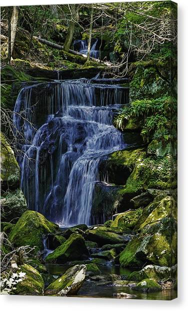 Falls In Vermont Mountain Stream  Canvas Print