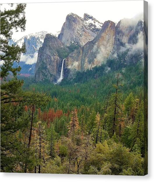 Canvas Print featuring the photograph Falls In Yosemite B by Phyllis Spoor