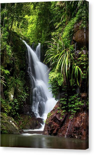 Vegetarian Canvas Print - Falls Of Elabana  by Az Jackson