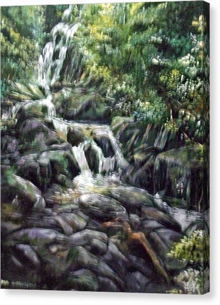 Falls  Canvas Print