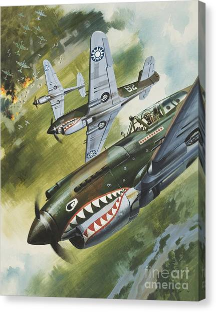 Tiger Sharks Canvas Print - Famous Aircraft And Their Pilots by Wilf Hardy