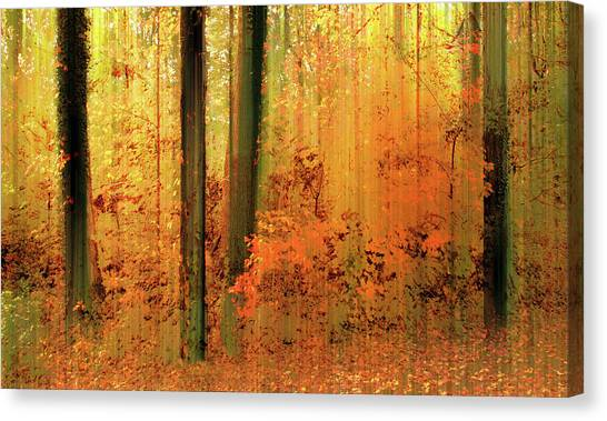 Canvas Print featuring the photograph Fanciful Forest by Jessica Jenney