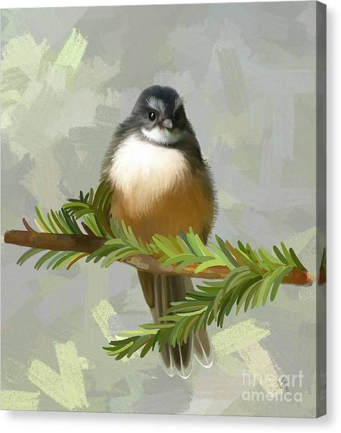 Canvas Print featuring the painting Fantail  by Ivana Westin
