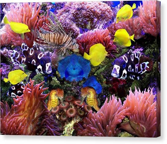 Fantasy Aquarium Canvas Print